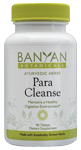 Ayurvedic Herbal Support for Parasites and Intestinal Cleansing